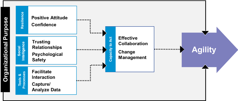 Organizational agility improvement